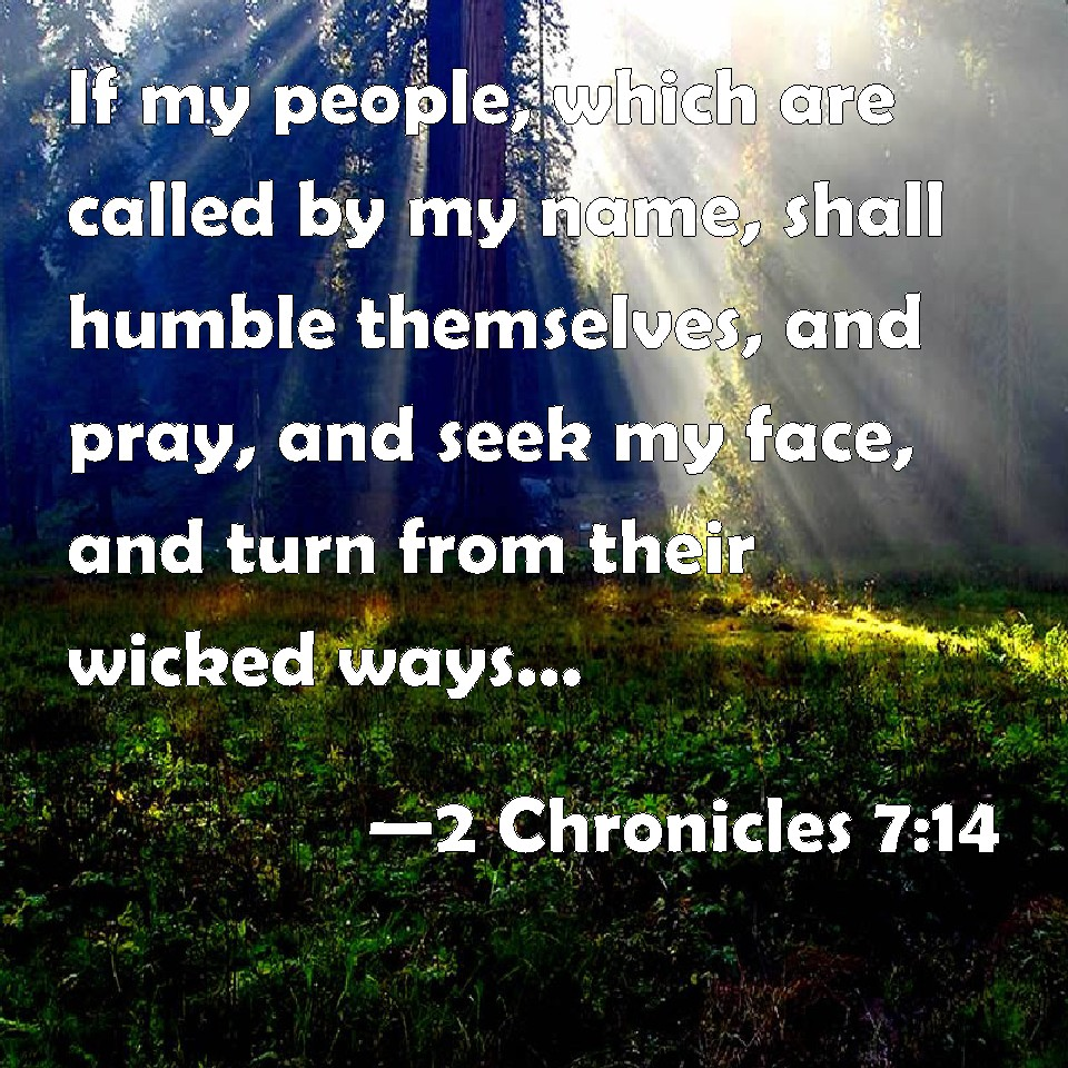 2 CHRONICLES 7-14